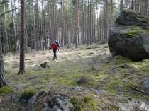 Skogsvandring Pia